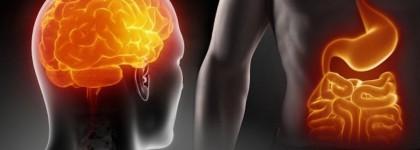 Massaggio all'Addome, il nostro secondo cervello