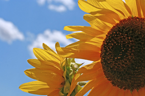Aspettando l'estate… rilassa mente e corpo!